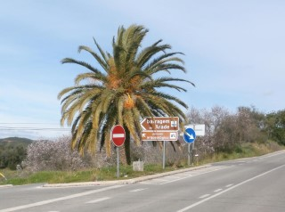 Turn left at this road sign [Silves to Messines road]